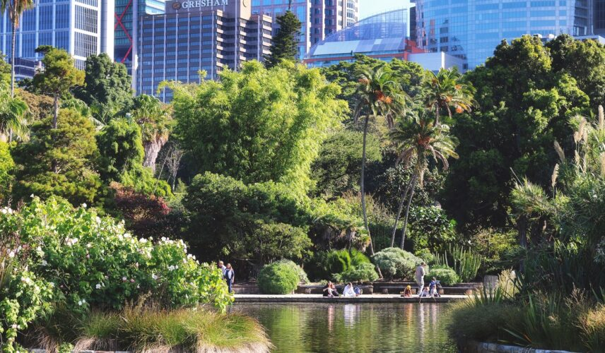 Sydney Botanic Gardens, Sydney, New South Wales. Cultural Attractions of Australia.