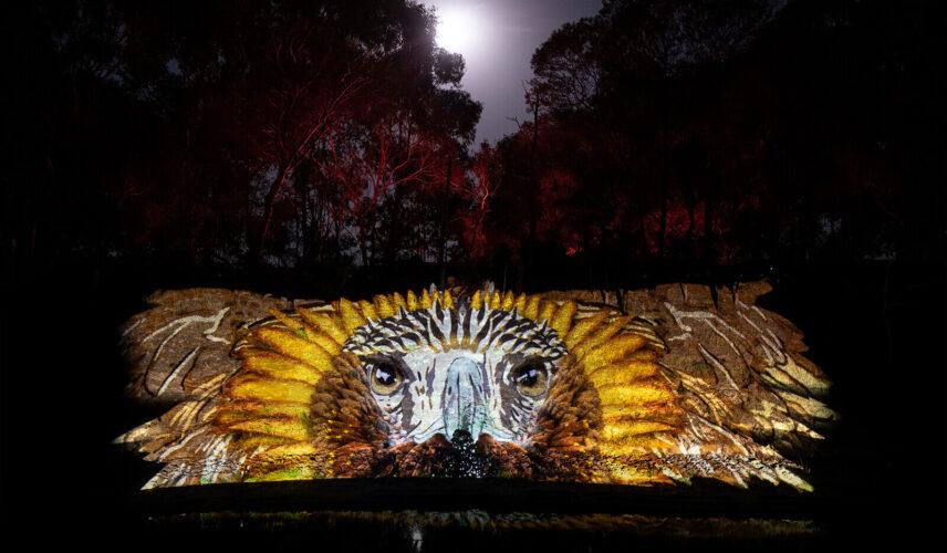 Aura Dreamtime Bunjil. AURA. Sovereign Hill, Ballarat. Cultural Attractions of Australia.